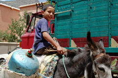 Ragazzo sull'asino, Imlil, alte montagne di atlante, Marocco Fotografia Stock