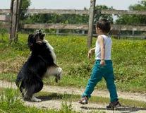 Ragazzo sveglio che gioca ampiezza con il suo cane Immagini Stock