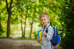 Ragazzo sveglio del bambino con i libri e lo zaino sul BAC verde della natura Immagine Stock Libera da Diritti