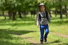 Ragazzo sveglio del bambino con lo zaino che cammina su un piccolo percorso in montagne Escursione del bambino Fotografia Stock