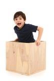 Ragazzo in una casella Fotografie Stock