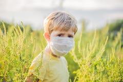 Ragazzo in una maschera medica a causa di un'allergia all'ambrosia Fotografia Stock Libera da Diritti