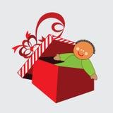 Ragdoll Christmas Gift Stock Photography