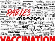 Rage - la maladie incurable virale des humains et des animaux Bloc des textes de mot de soins de santé Image stock