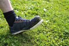 Ragged πάνινο παπούτσι Στοκ Εικόνες