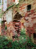 Ragged breach in the old wall. The ruins of an ancient monastery in a thicket of wild forest Stock Photo