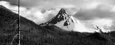 Ragged Burned Mountain Peak Mt. Washington Oregon Cascade Range Stock Images