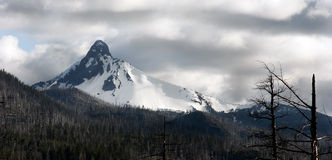 Ragged Burned Mountain Peak Mt. Washington Oregon Cascade Range Stock Image