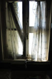 Ragged curtains Stock Images