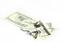 Ragged dollar Stock Photos
