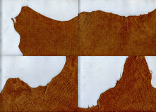 Ragged edges brown leather texture. Set of ragged edges brown leather texture Royalty Free Stock Image