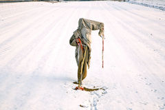 Ragged  and freezing scarecrow in winter on the snowfield Stock Images