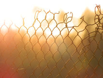 The ragged grille wire in fire... Royalty Free Stock Photos