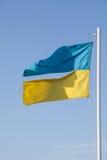 Ragged ukrainian flag. Divided Ukraine Stock Photos