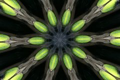 Raggi del caleidoscopio Fotografia Stock
