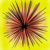 Raggi del nero dai precedenti colourful royalty illustrazione gratis