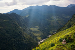 Raggi del overrice della luce a terrazze nell'area di conservazione di Annapurna, Nepal Fotografia Stock Libera da Diritti