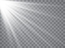 Raggi del riflettore con i fasci su fondo trasparente Vettore leggero istantaneo illustrazione di stock