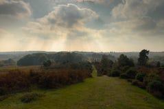Raggi del sole dalle nuvole e dalla nuova campagna la più forrest fotografia stock