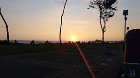 Raggi del sole di sera Immagini Stock Libere da Diritti