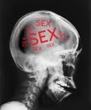 Raggi x della testa con il sesso di parole dentro immagine stock libera da diritti