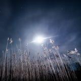 Raggi di alone della luna piena - paesaggio della luna piena di notte Immagini Stock