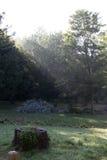 Raggi di campeggio di Dio Fotografia Stock Libera da Diritti