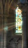 Raggi di indicatore luminoso Fotografia Stock Libera da Diritti