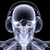 Raggi X di scheletro - DJ 3 Fotografie Stock Libere da Diritti