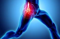 Raggi x di scheletro dolorosi dell'anca, illustrazione 3D illustrazione di stock