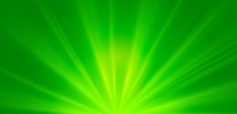 Raggi di sole verdi astratti, fondo ambientale della molla di concetto Immagini Stock