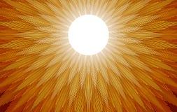 Raggi di Sun royalty illustrazione gratis