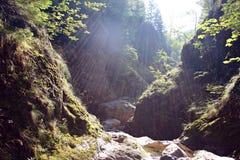 Raggi di Sun nel canyon Immagini Stock Libere da Diritti