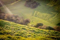 Raggi di Sun sopra i campi al tramonto Fotografie Stock