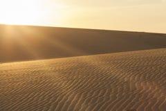 Raggi di Sun sopra le dune di sabbia Immagine Stock