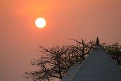 Raggi dorati del sole durante l'alba Immagine Stock Libera da Diritti