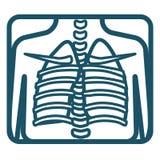 Raggi x umani dei polmoni Immagini Stock