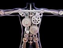 Raggi x umani maschii con gli attrezzi interni su un fondo nero. fotografia stock