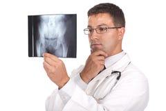 Raggi X della holding del medico Fotografia Stock Libera da Diritti