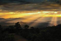 Raggio di sole sopra la foresta larga Immagine Stock Libera da Diritti