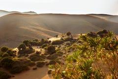 Raggio soleggiato della montagna, del deserto e della vegetazione i Isola Lemnos, Grecia Immagini Stock