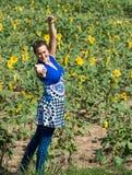 Raggiungendo fuori da un campo dei girasoli Fotografie Stock
