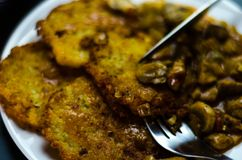Raggmunkar med den kryddiga ragu, läcker traditionell maträtt, Hun royaltyfria foton