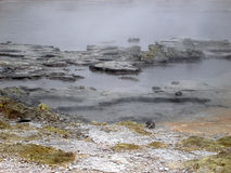 Raggruppamenti d'ebollizione di attività geotermica, Nuova Zelanda Immagine Stock Libera da Diritti