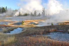 Raggruppamenti del Thermal del Yellowstone Fotografia Stock Libera da Diritti