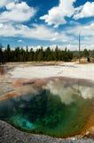 Raggruppamento della sorgente calda del Yellowstone Fotografia Stock