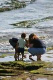 Raggruppamento di marea Fotografie Stock Libere da Diritti