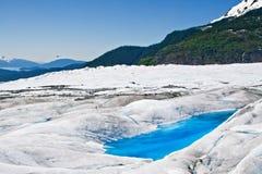 Raggruppamento di Turquiose sul ghiacciaio di Mendenahll Immagini Stock Libere da Diritti
