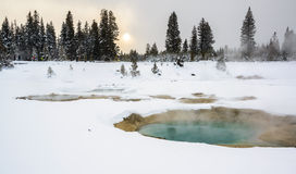 Raggruppamento termico al pollice ad ovest, Yellowstone Fotografie Stock