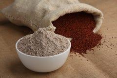 Ragi mąka zdjęcie stock